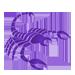 skorpion_s